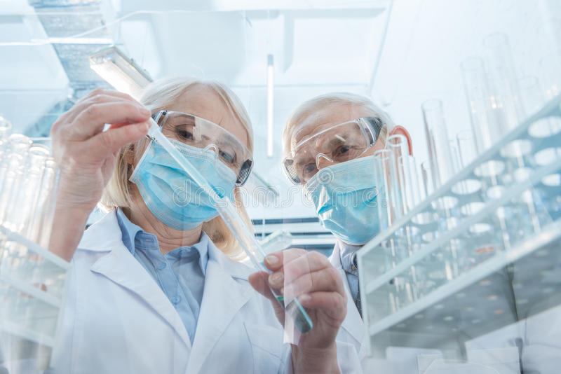 Couple of scientists making experiment in laboratory. Senior couple of scientists making experiment in laboratory royalty free stock photo
