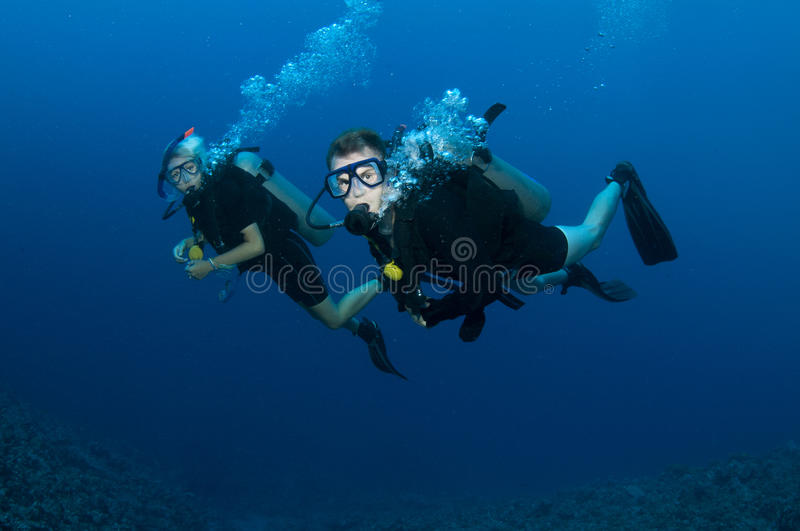 Download Couple scuba diving stock photo. Image of gear, people - 18234544