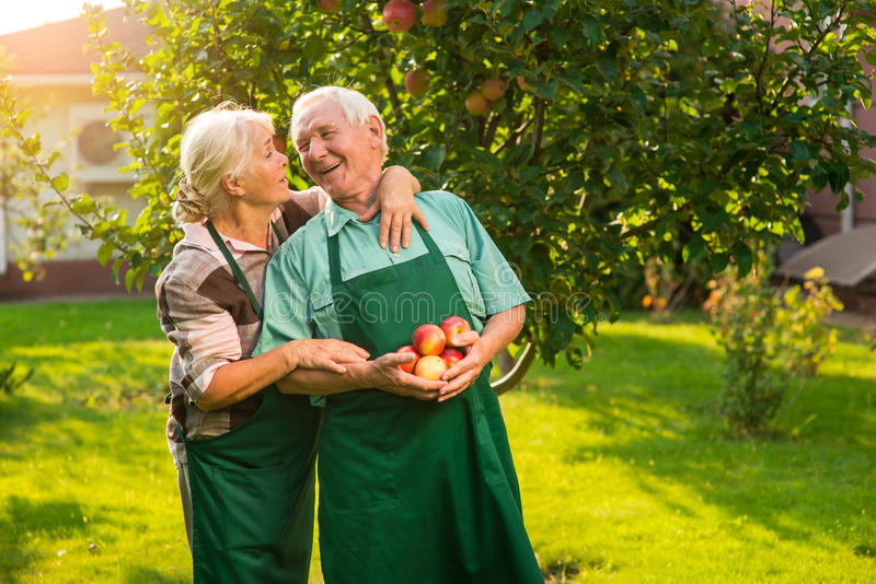 Couple of seniors with apples. stock photos