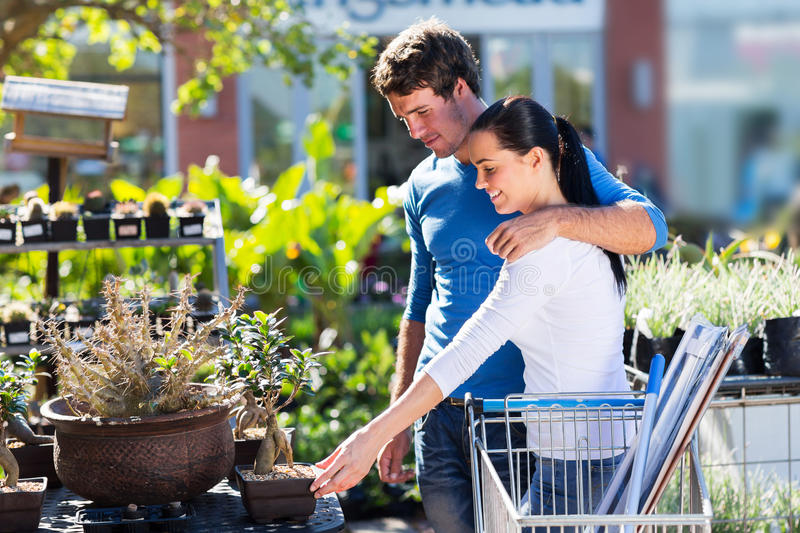 Couple shopping bonsai royalty free stock photos
