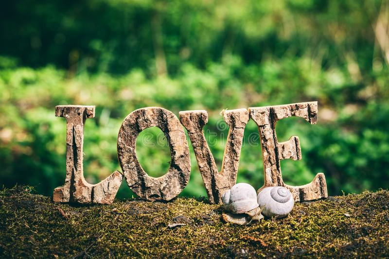 A couple of snails and LOVE writing. Standing on the wooden trunk. Family and romance concept. Valentine`s Day stock photos