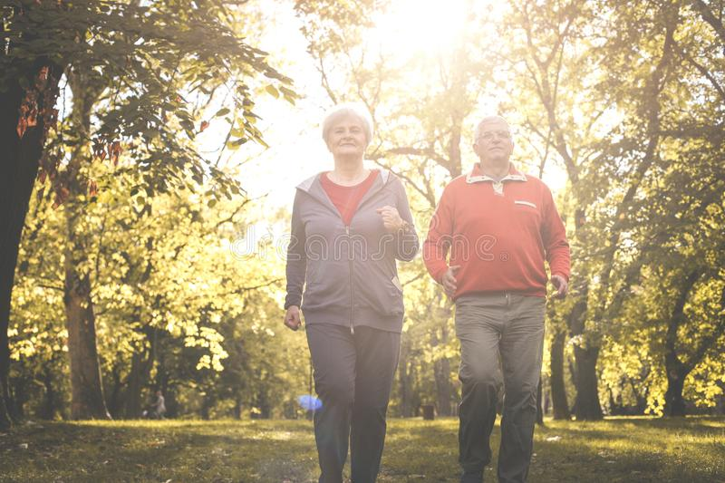 Couple in sports clothing jogging together in park. Seniors couple in sports clothing jogging together in park royalty free stock images