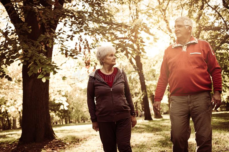 Couple in sports clothing walking trough park and having stock photos