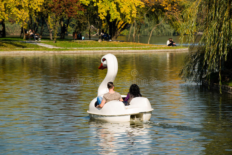 Couple in a swan hydrocycle. On the I.O.R. lake, in I.O.R. park in autumn, Bucharest, Romania royalty free stock image