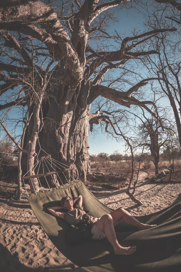 Couple taking selfie on hammock hanging from huge Baobab tree in the african savannah. Fisheye view, toned image. Wilderness safar stock photography
