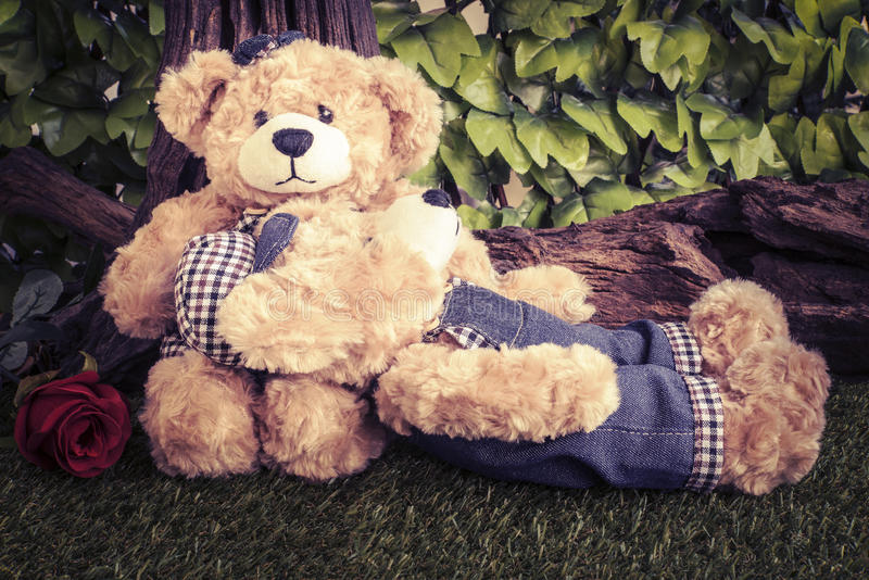 Couple teddy bears with rose in the garden royalty free stock image