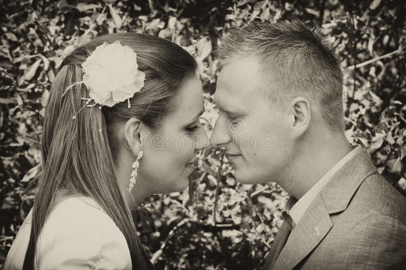 Couple touching noses stock image
