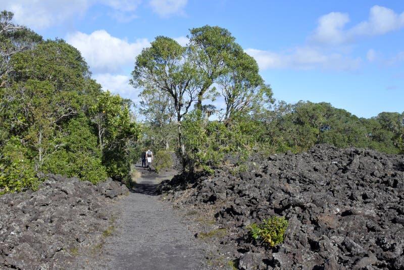 Couple trekking in Rangitoto Island New Zealand royalty free stock photos