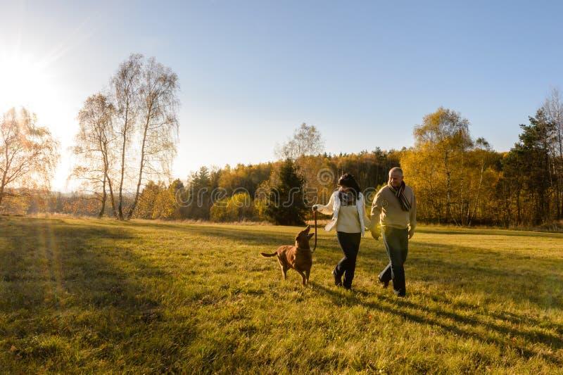 Couple walk dog in countryside autumn sunset stock image