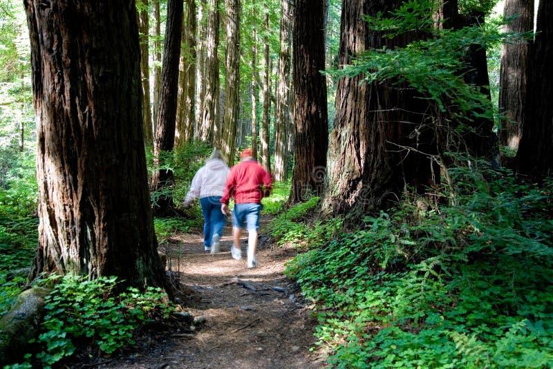 Couple walking stock photography