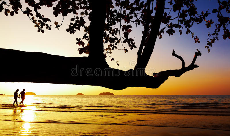 Download Couple Walking On Beach At Sunset Royalty Free Stock Images - Image: 12677829