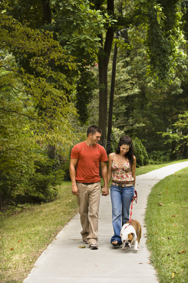 Couple walking dog. Caucasian mid adult couple walking English Bulldog in park stock images
