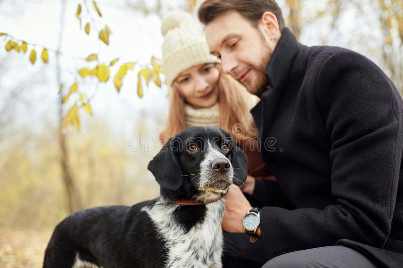 Couple walking with dog in the Park and hugging. Autumn walk men stock photo