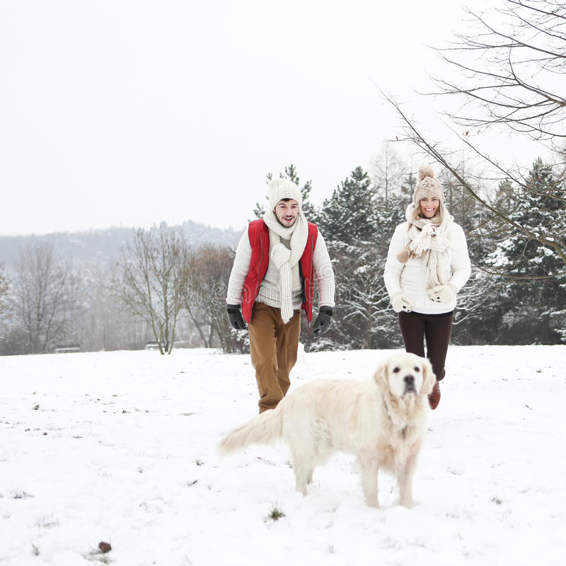 Couple walking dog in winter stock photography