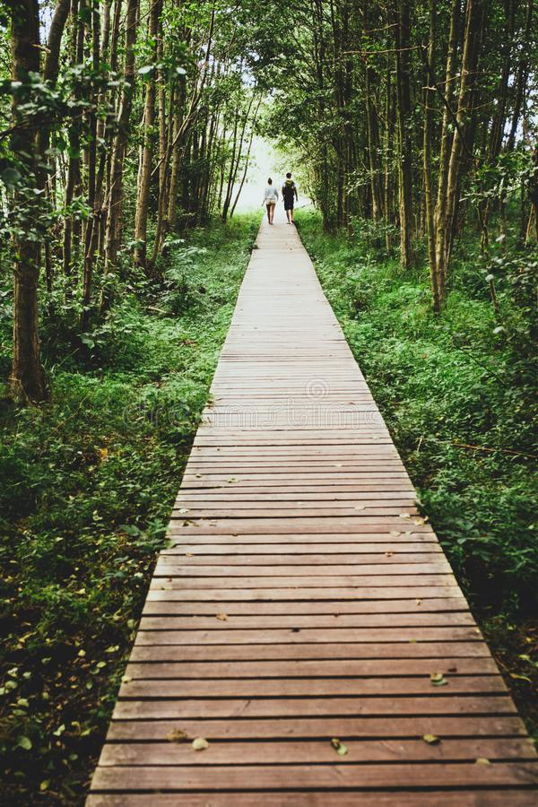 A couple walking a wooden path in the forest stock photo
