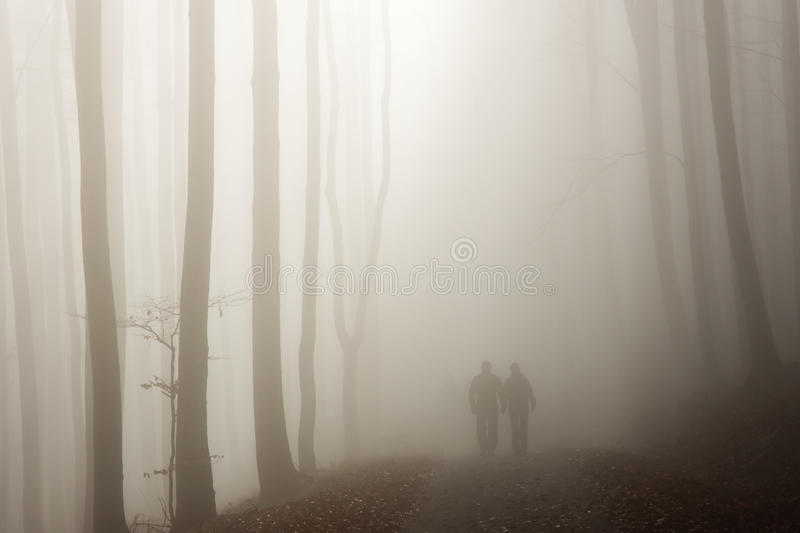 Couple Walking In The Misty Forest Royalty Free Stock Photos