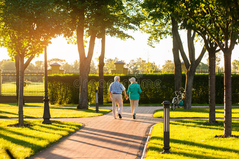 Couple walks near trees. royalty free stock images