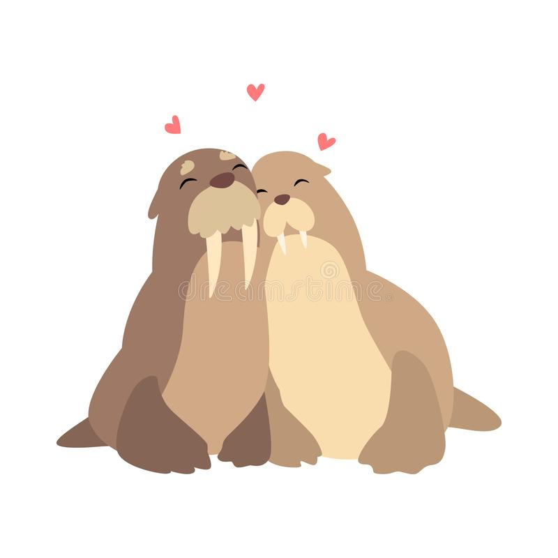 Couple of walruses in love embracing each other, two happy aniimals hugging with hearts over their head vecto stock illustration