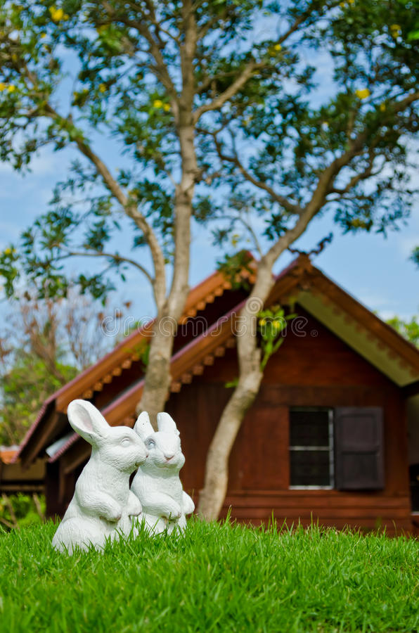 Download Couple Of White Rabbit In Garden Stock Photo - Image: 25151314