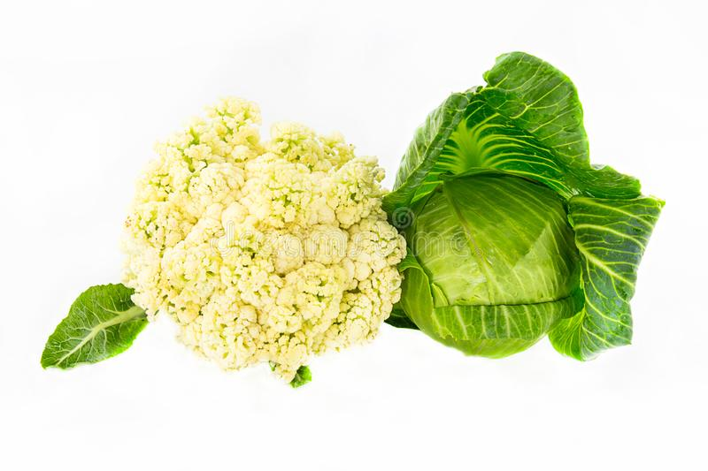 Couple of whole cabbage colored creamy surface with a young dark green leaves head out on a white isolated background royalty free stock photo