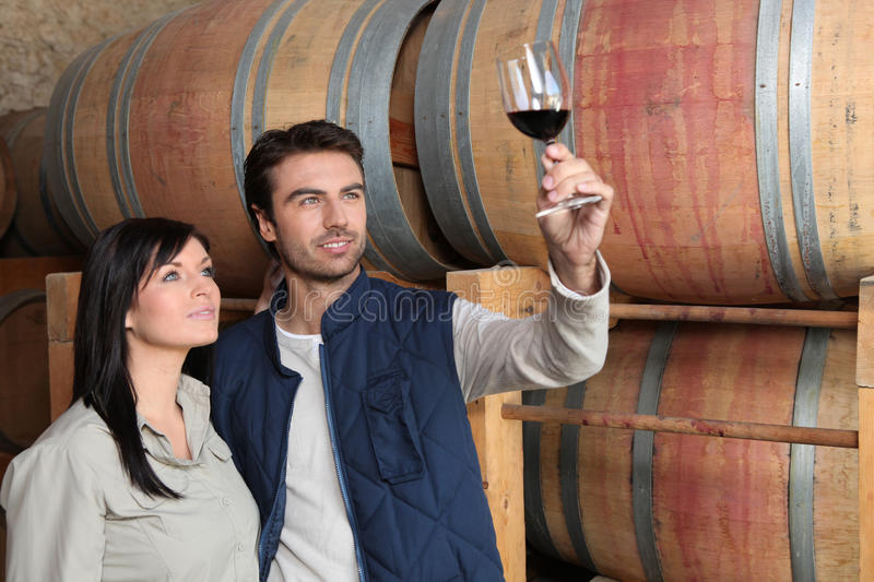 Couple of wine growers. In wine storehouse royalty free stock image