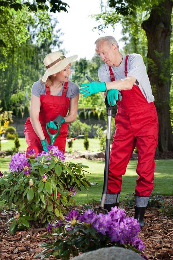 Couple working in garden. Vertical view of couple working in garden royalty free stock photos