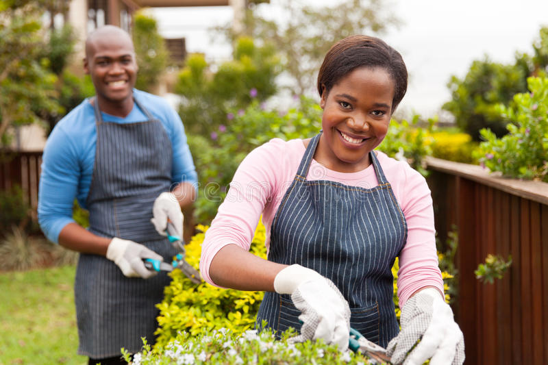 couple working home garden stock photos