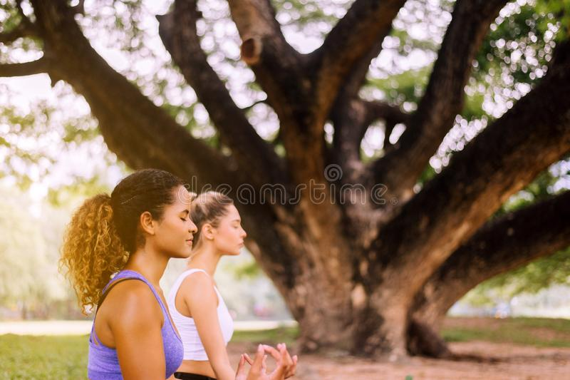 Couple young woman practicing yoga sitting at park in the morning,Positive thinking,Healthy and lifestyle concept,Close up stock photos