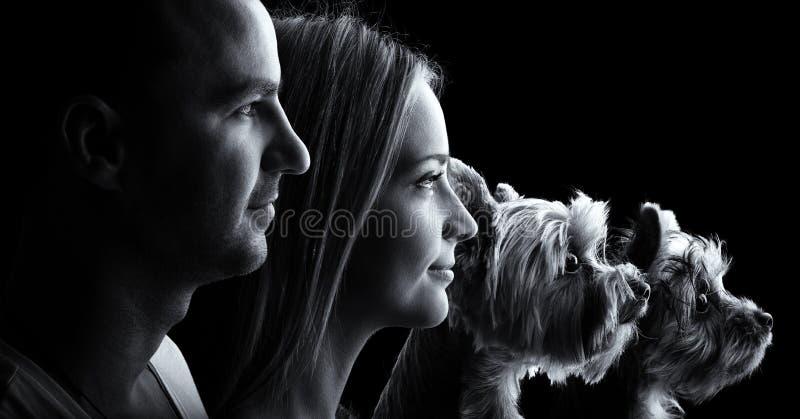 Couples affectueux et deux chiens de terrier de Yorkshire - noir et blanc images libres de droits