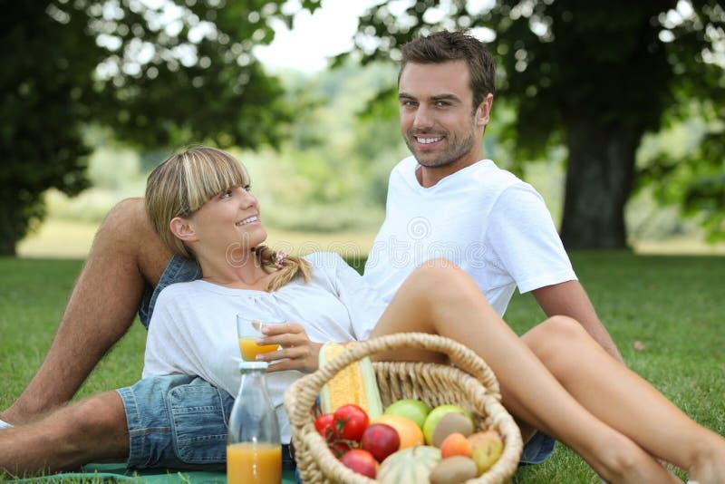 Couples appréciant le pique-nique image libre de droits