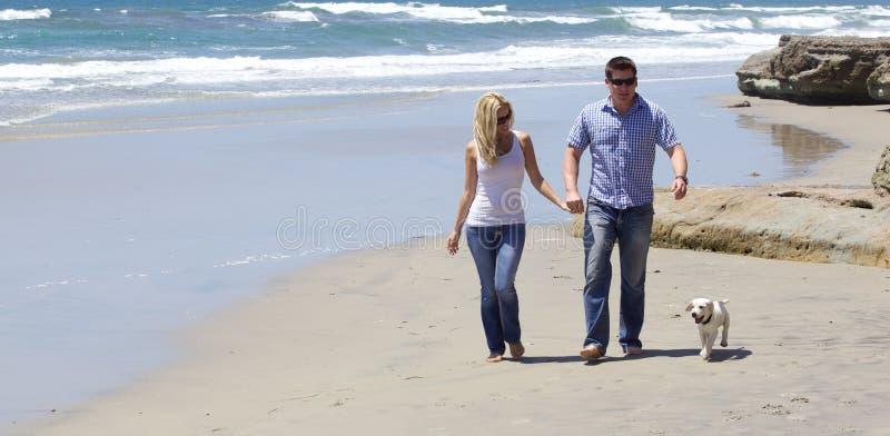 Couples attrayants marchant à la plage avec leur chiot images libres de droits
