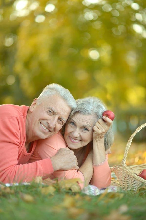 Download Couples Ayant Le Pique-nique Photo stock - Image du stationnement, nique: 76081618
