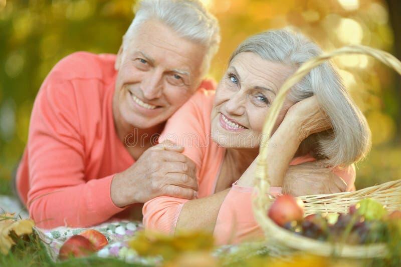 Download Couples Ayant Le Pique-nique Image stock - Image du hommes, âgé: 76082885