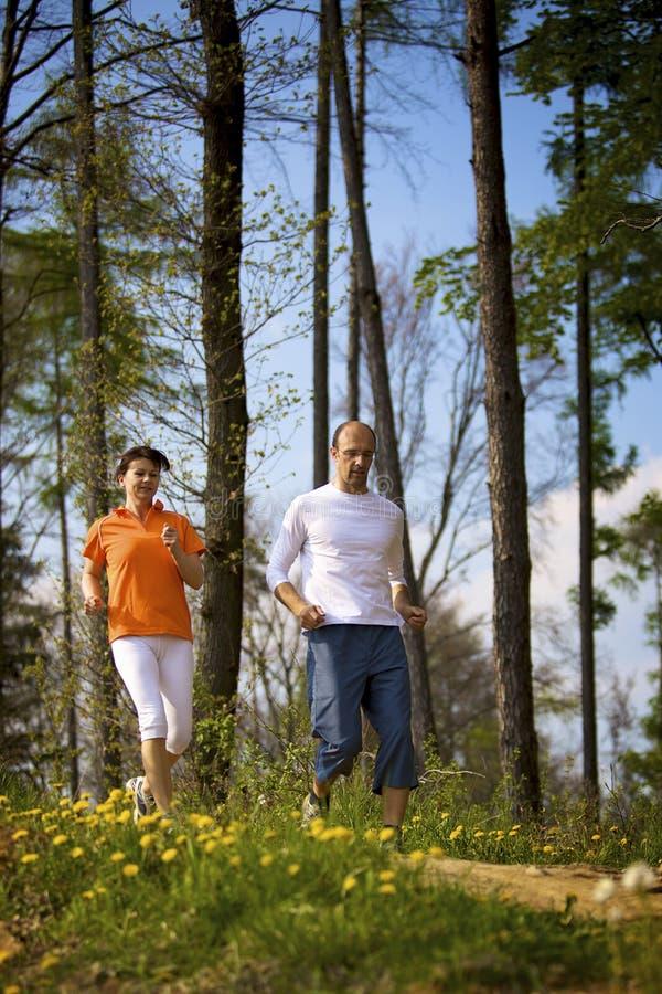 Couples courant dans la forêt images stock
