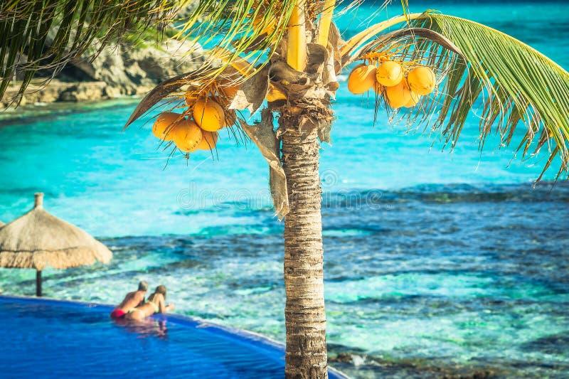 Couples détendant sur l'île tropicale images stock