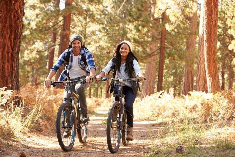 Couples d'afro-américain faisant un cycle par la région boisée d'automne images stock
