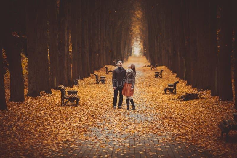 Couples dans l'amour marchant sur une belle allée d'automne en parc photos libres de droits