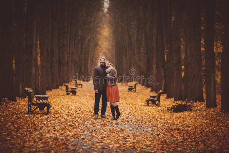 Couples dans l'amour marchant sur une belle allée d'automne en parc photographie stock