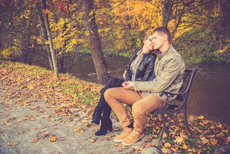 Download Couples dans la chute d'or photo stock. Image du nature - 45352894