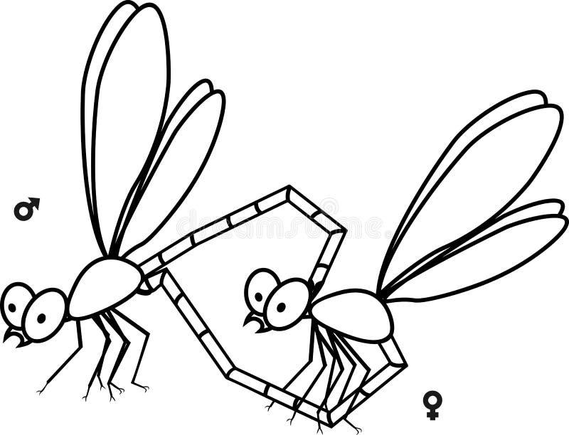 Couples de accouplement des libellules colorant la page illustration stock