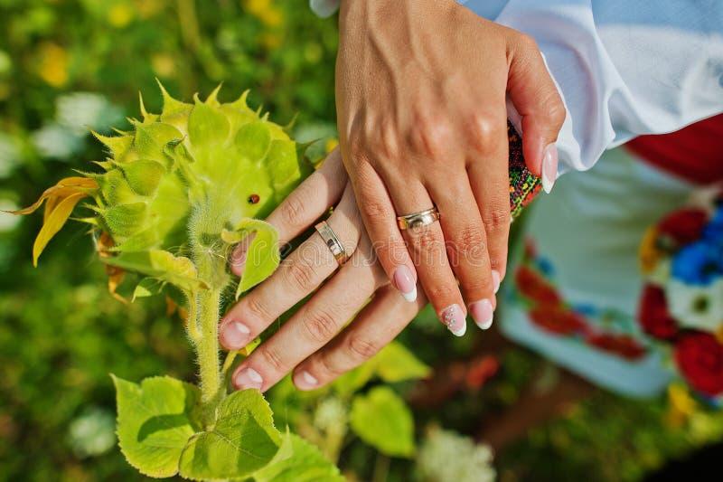 Couples de mains image libre de droits