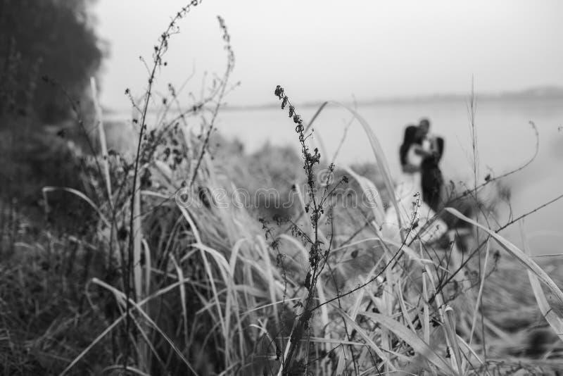 Couples de mariage au rivage de lac images stock