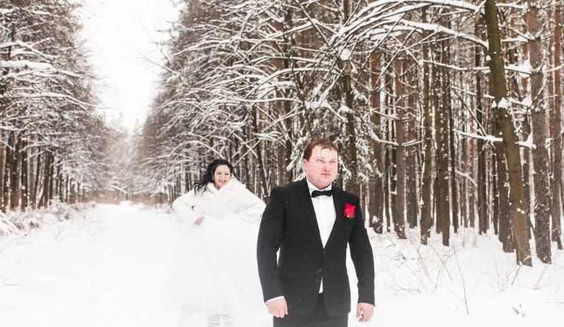 Download Couples De Mariage En Hiver Image stock - Image du groupe, beau: 77153363