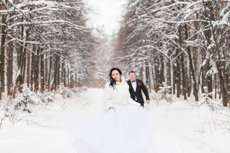 Download Couples De Mariage En Hiver Image stock - Image du personne, robe: 77154433