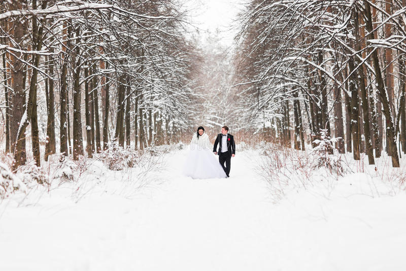 Download Couples De Mariage En Hiver Photo stock - Image du robe, froid: 77156596
