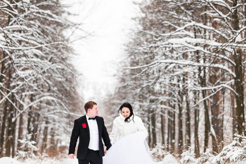 Download Couples De Mariage En Hiver Photo stock - Image du sensation, dame: 77156796