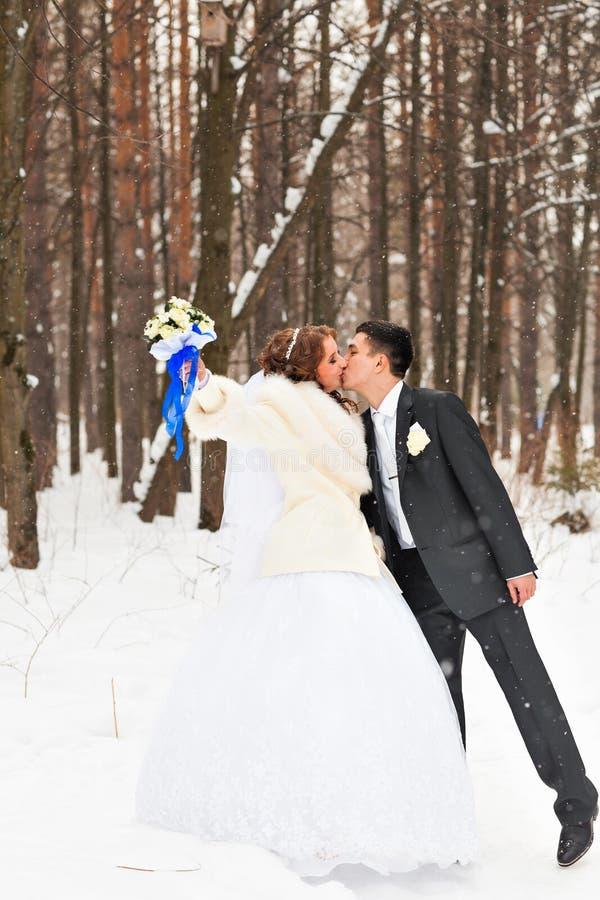 Download Couples De Mariage En Hiver Photo stock - Image du bride, renivellement: 77162948