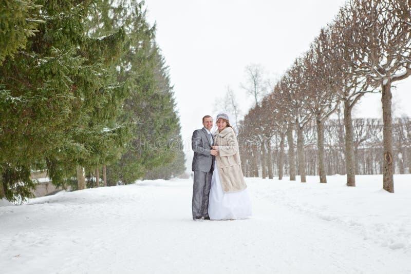Couples de mariage marchant sur le parc neigeux photographie stock libre de droits