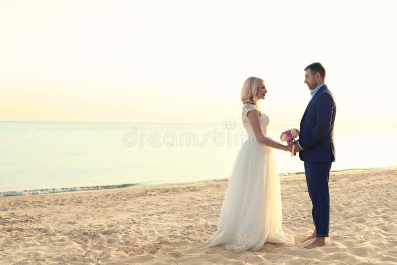Couples de mariage tenant des mains ensemble sur la plage photo libre de droits