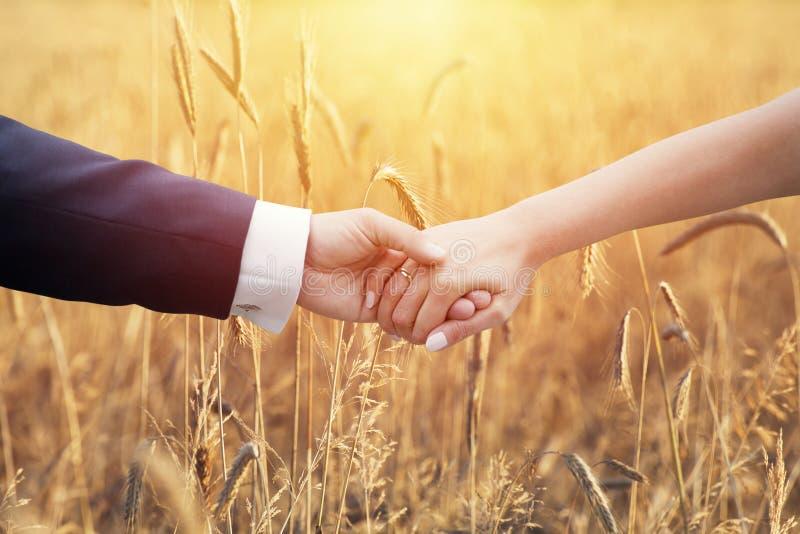 Couples de mariage tenant des mains sur des épis de blé photos libres de droits